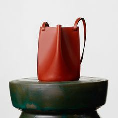 Un sac en cuir de veau celine