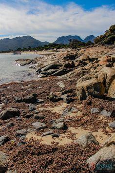 Hazards Beach Freycinet Peninsula Tasmania, Australia