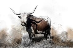 Available in a range of sizes. - Delivery is FREE to anywhere in South Africa! Watercolours, South Africa, Moose Art, Delivery, Canvas Prints, Range, Free, Animals, Color