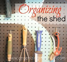 Organizing the storage/tool shed.