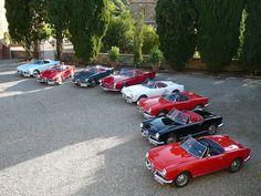Alfa romeo #ClassicCars #MassimoFilippa