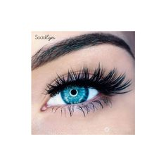 Social Eyes Minx 2.0 ($7.95) ❤ liked on Polyvore featuring beauty products, makeup, eye makeup and eyes