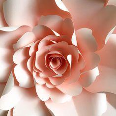 PDF Paper Flower Template DIGITAL Version - The Wild Rose - Original Design by Annie Rose