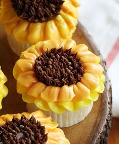 Simple decorated Sunflower Cupcakes are fun for every age level. This is the perfect cupcakes for any occasion that involves ...