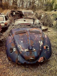 Slipping into the ground. #Nature #Art #Beauty #Volkswagen #History