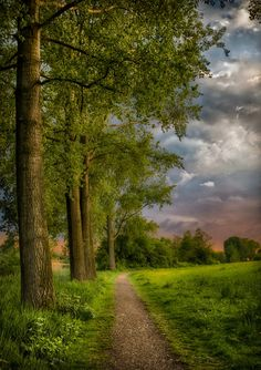 A Walk In The Park (Netherlands) by Karel Ton