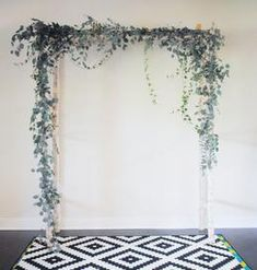 white birch wedding arch with eucalyptus and ivy greens
