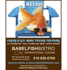 BABELFISH BISTRO - Home Closed For Holidays, Kitchens