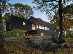 Cantilevering Single Family Residence Built Between Tall Trees    looks like an AT AT Walker