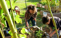 Innovative ideas for school gardens