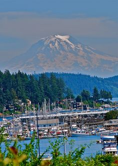 Gig Harbor, WA. I'm so lucky to be from the most beautiful place :)