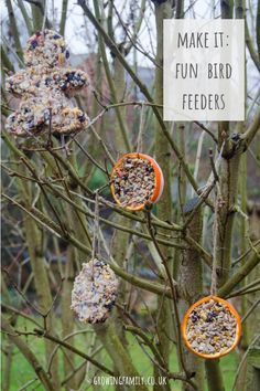 How to make fun shaped bird feeders : How to make your own homemade bird feeders - a simple and fun nature activity for children which will encourage wild birds to visit your garden! Best Bird Feeders, Bird Feeder Craft, Garden Bird Feeders, Homemade Bird Feeders, Wild Bird Feeders, Bird Suet, Forest School Activities, Nature Activities, Autumn Activities