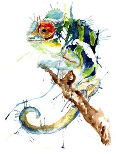 Colourful chameleon - Meg Ashford - Watercolor