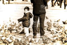 Child And His Parent Are Between Of The Many Birds royalty-free stock photo