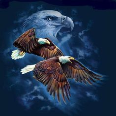 Soaring on wings of eagles...... More