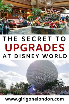 The Secret to Upgrades at Disney World - Check out the secrets to getting upgraded at Disney World to make sure you have a magical time at t - Disney World Usa, Disney World Rides, Disney World Hotels, Walt Disney World Vacations, Disneyland Trip, Disney Trips, Disney Travel, Disney Disney, Disney Parks