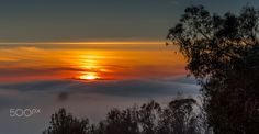 What a wonderful sunset over the fog layer in Santa Barbara. Some trees stand out like islands from the fog layer and the sun even reflects slightly in the fog. I hope you like my picture!