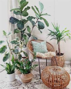 Plant Stand Design Ideas for Indoor Houseplants Decoration decoration interieur maison Summer Deco, Decoration Plante, Basket Decoration, Decoration Design, Home Decor Baskets, Peace Lily, Diy Plant Stand, Plant Stands, Bedroom Plants