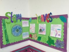 Science (Plants) - Making A Class Display Lesson