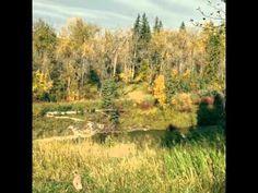 Fall in Calgary is beautiful