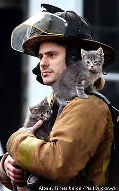 Firefighter and kitties.