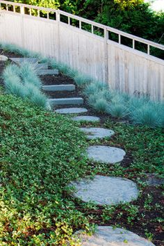 Residential Steep Slope Landscaping Design Ideas, Pictures, Remodel, and Decor - page 21