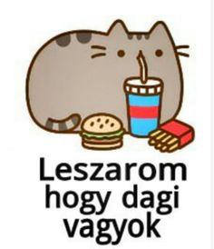 Pusheen Cat, Minden, Asd, Funny Moments, Motivational Quotes, Jokes, Wallpaper, Happy, Cute