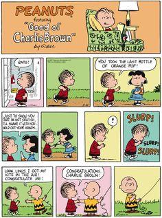 Peanuts Cartoon for May/25/2014