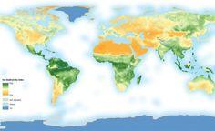 - interesting-maps:  Estimated soil biodiversity around the world...