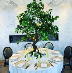 """Under the Tuscan Sun"" event by R5 Event Design! Complete with green trees, lots of greenery, lemons & golden charger plates!"