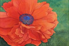 Poppy Flower Watercolor by Brina Beury