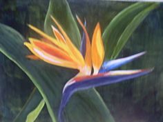 Bird in Paradise flower by Darleen Hyde in the FASO Daily Art Show