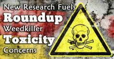 New Research Fuels Glyphosate Toxicity Concerns. PLEASE HELP MAKE THIS INFO FO VIRAL .... SEND TO ALL YOU KNOW. Ask yourself ....  what will the consequences in 3 years from now be??