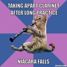 clarinet cat-LOVE THIS! (mostly because I was a clarinet player) Clarinet Humor, Bass Clarinet, Clarinet Reeds, Saxophone Music, Band Nerd, Marching Band Memes, Choir Memes, Marching Music, Band Problems