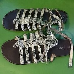 Snakeskin Print Gladiator Sandals Size 9 Madeline Stuart Abigail sandals. Snakeskin print Gladiator style with 2 ankle straps and buckles. Madeline Stuart Shoes Sandals
