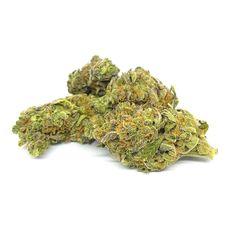 Die Neue CBD Hanf Blüte SKYWALKER OG ganz exklusive und derzeit nur ein gewisse Menge verfügbar!  -INDOOR CBD CANNABIS FLOWER- Indoor CBD Blüten SKYWALKER OG (unter 0,2% THC) I High Quality Cannabis, Herbs, Flowers, Hemp, Ganja, Herb, Royal Icing Flowers, Flower, Florals