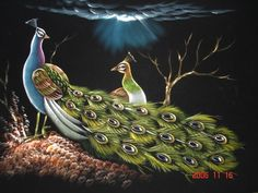(SKU No.: Oil00791) Peacock Wildlife Scenery, Krishna Mart India