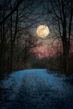 Good Night  - Mária Fodor - Google+