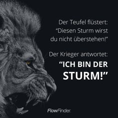 ᐅ Spruchbild 77 › FlowFinder We sometimes understand numerous a friendly relationship insurance quotes plus Love Wallpaper, Wallpaper Quotes, Osho, What Is Digital, Cute Funny Quotes, Fake Friends, Insurance Quotes, Funny Wallpapers, True Words
