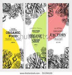 Organic food banner collection. Fresh vegetables. Vector illustration