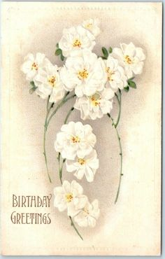 VINTAGE HAPPY BIRTHDAY Embossed Postcard White Flowers c1910s - EUR 5,27 | PicClick IE