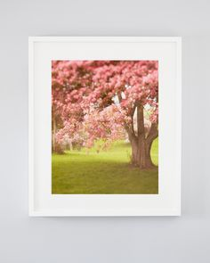 This pink flowering apple tree is the perfect place to curl up to read. A spring nature photography print that's both graceful and romantic. Fine Art Photography, Landscape Photography, Nature Photography, Travel Photography, Nautical Prints, Spring Nature, Apple Tree, Large Wall Art, Nature Pictures