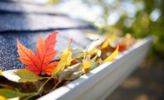 A Few Helpful Gutter Cleaning Tips for Your Home