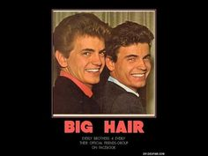 Everly BrotherS    RARE - The Drop Out