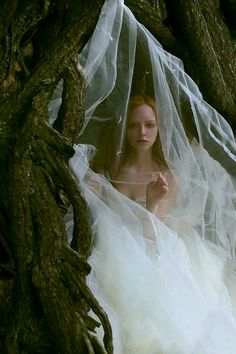 #fairytale #enchanted #fantasy