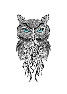 Knot Owl