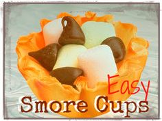 Easy Smore Cups and other smore recipes.