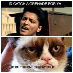 My favorite grumpy cat memes - # grumpy cat More information . - My favorite grumpy cat memes – # Grumpy cat For more information on Grumpy Cat, gifts and - Grumpy Cat Quotes, Funny Grumpy Cat Memes, Cat Jokes, Funny Animal Jokes, Cute Funny Animals, Animal Memes, Funny Cats, Funny Jokes, Cats Humor