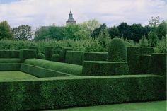 Yew hedges - Oorsmaal, Belgium