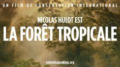 la nature parle : nicolas hulot est la forêt tropicale   les défis mondiaux, l'environnement